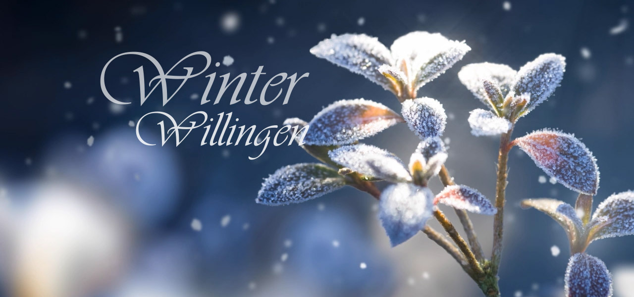 winterdummy